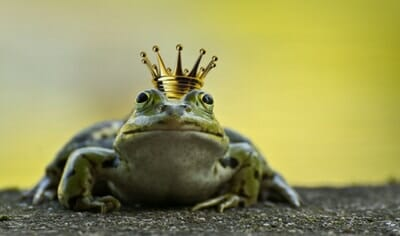 ETF – Eat the Frog?